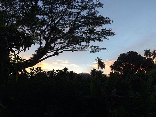 Tainos guadeloupe nature
